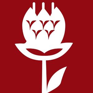 Logo Elordi
